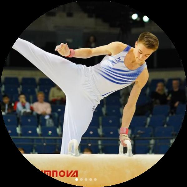 national squad gymnast - Luke Whitehouse